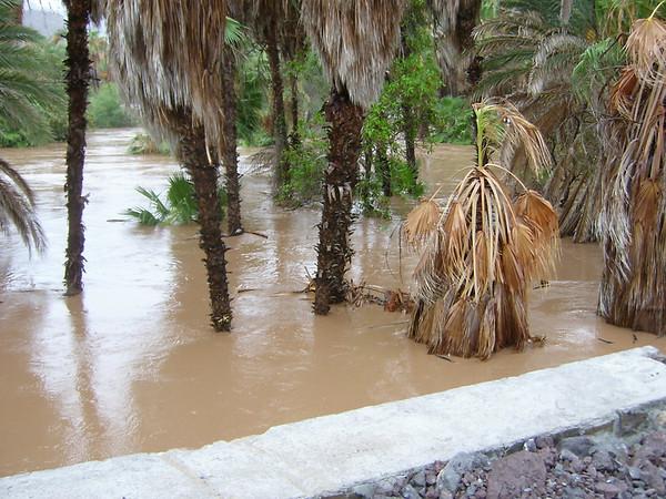 Mulege Flood ... 09/06
